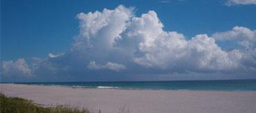 Palm-Beach-View
